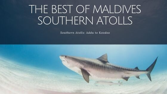 The Best of Maldives Southern Atolls