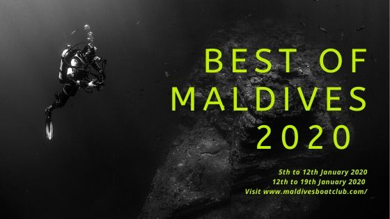 Best Of Maldives 2020